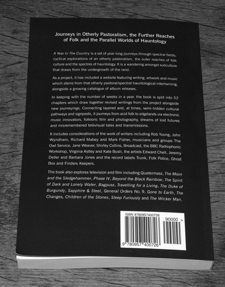 A-Year-In-The-Country-Wandering-Through-Spectral-Fields-book-Stephen-Prince-back-cover-published-version